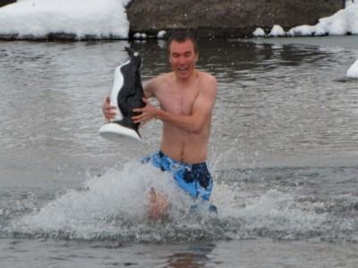 Winterfest-Penguin Plunge